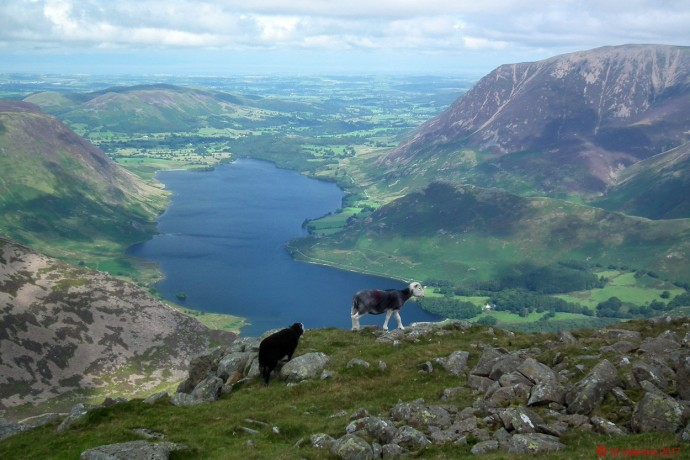 Crummock Water from Grey Crags spur.
