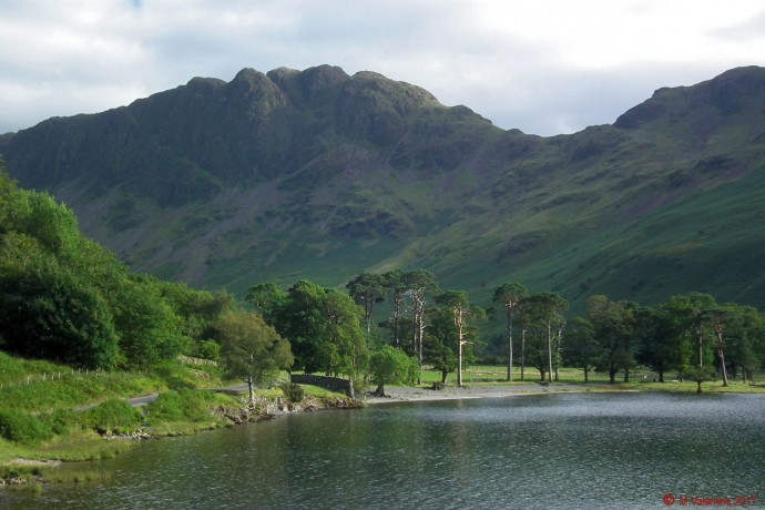 Haystacks and the Buttermere Pines.