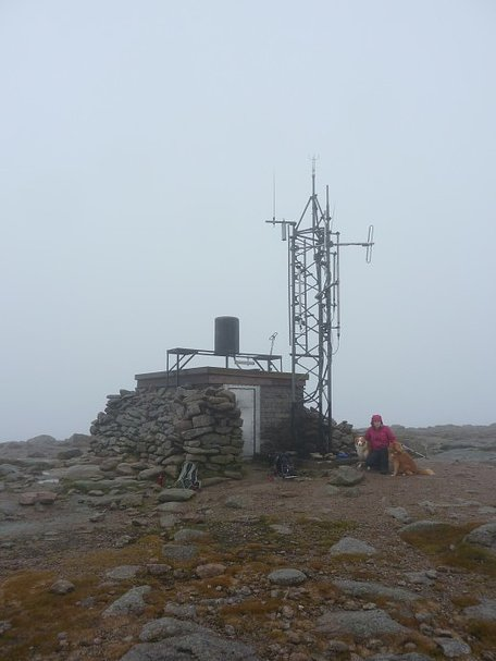Beth and the dogs by the weather station on the summit of Cairn Gorm