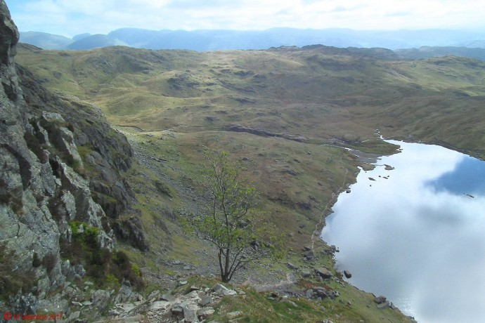 Looking down to Stickle Tarn.