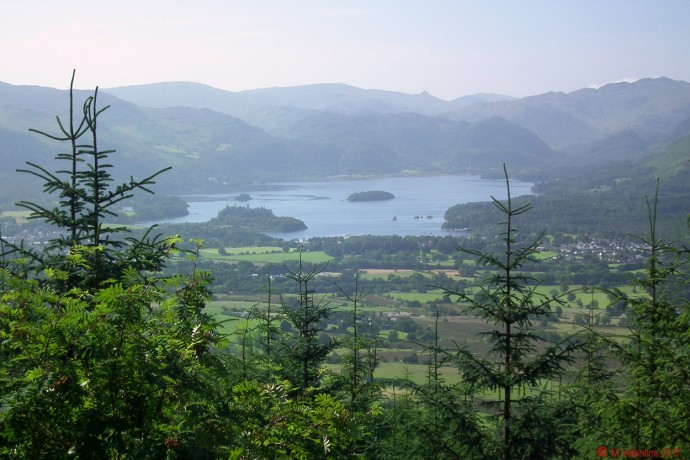 Derwentwater from Dodd Wood